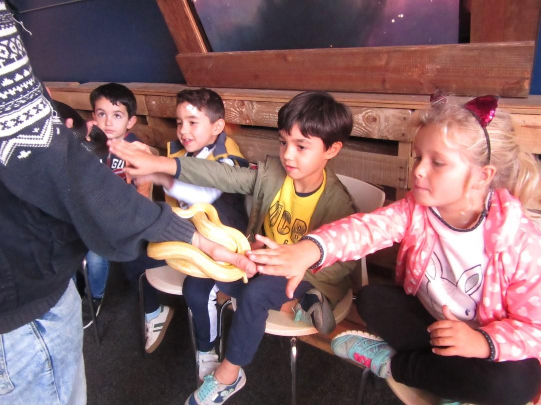 """Educación Infantil 4 Y 5 Años Visitan El """"Parque De La Vida"""" En Luarca"""
