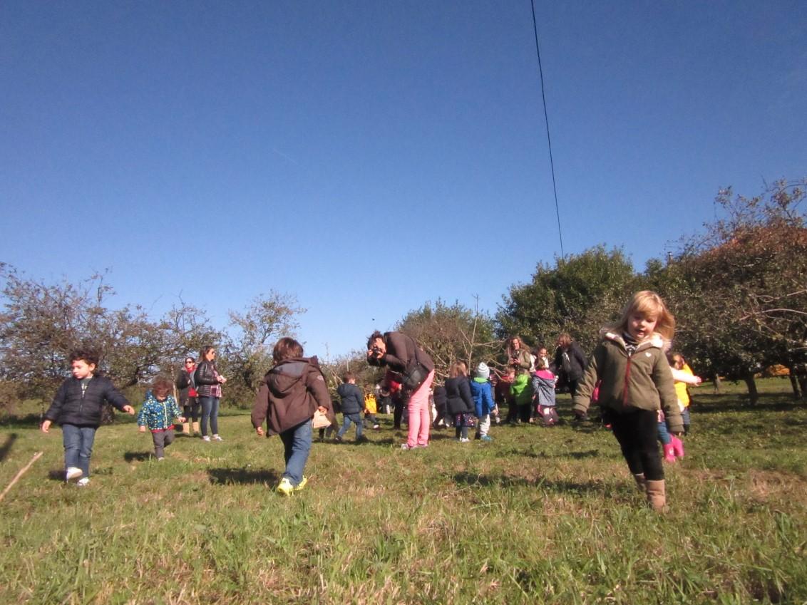Educación Infantil 3 Años, Un Día De Campo Y Manzanas