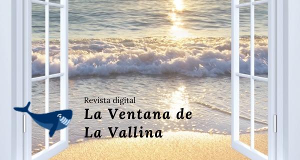"""""""LA VENTANA DE LA VALLINA"""" Periodismo En Acción"""