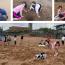 Última Clase En La Playa